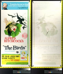 The Birds (Australian Daybill) - Before